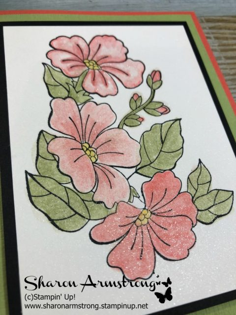 watercolor pencil techniques with Sharon Armstrong