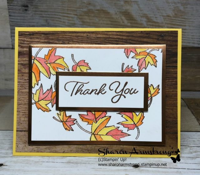 Stampin' Up! Color Your Season Limited Time Products card making