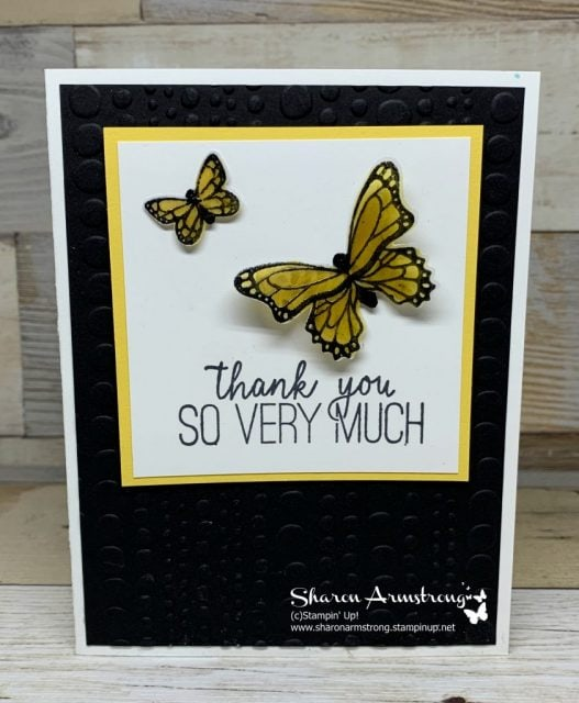 Thank-You-Card-with-Vellum-Butterfly-Gala-Stamp-Set