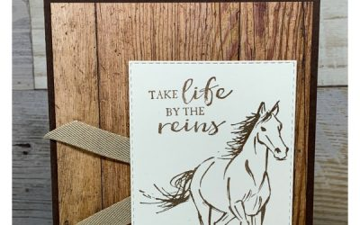 Birthday Card Featuring Stampin' Up! Let it Ride