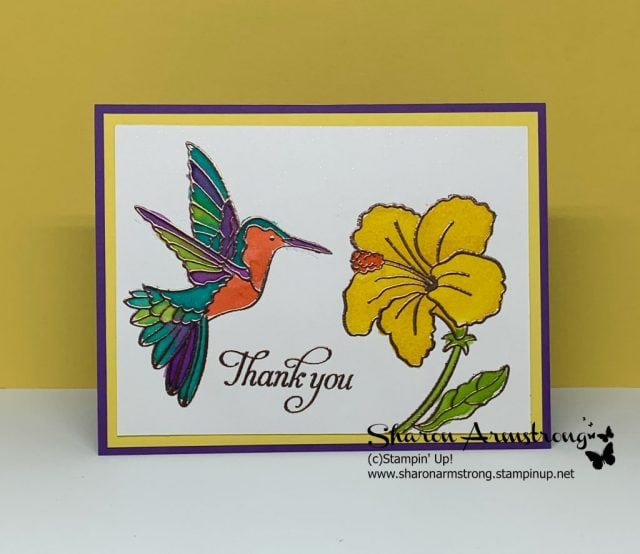 Watercolor-Greeting-Card-Bright-Colored-Hummingbird-Feeding-off-of-Yellow-Flower