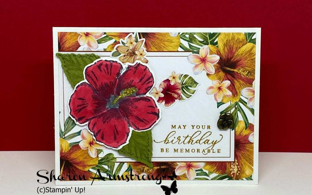 How to Make Easy Cards With A Memories & More Card Pack